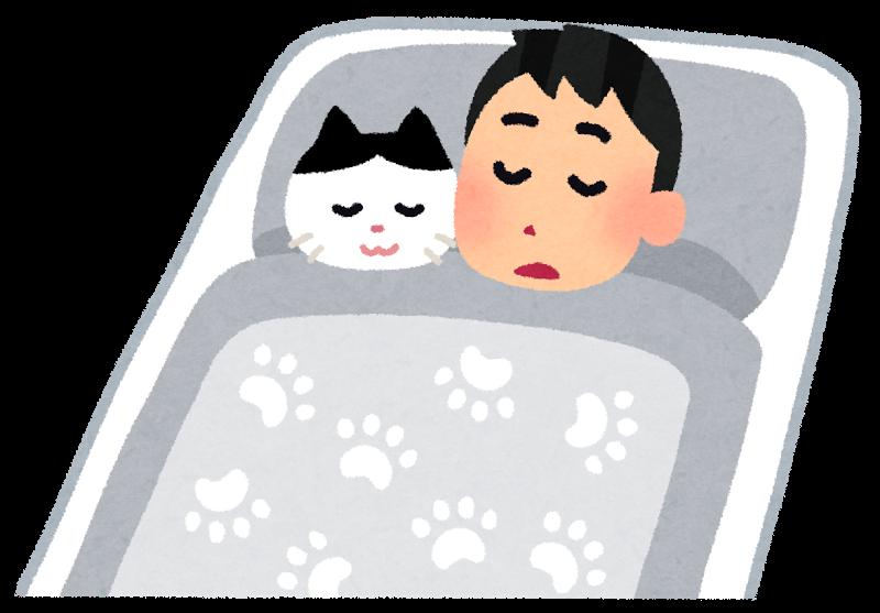 ペットと一緒に寝ているイラスト