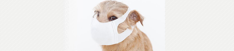 空気感染を防ぐ