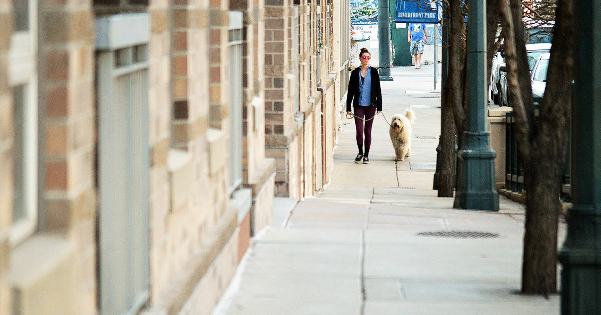 秋。愛犬とのお散歩が気持ちのよいこの季節に、改めて散歩のマナーをを考えてみる