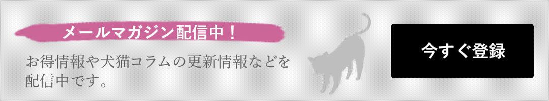 お得情報や犬猫コラムの更新情報などを 配信中です。