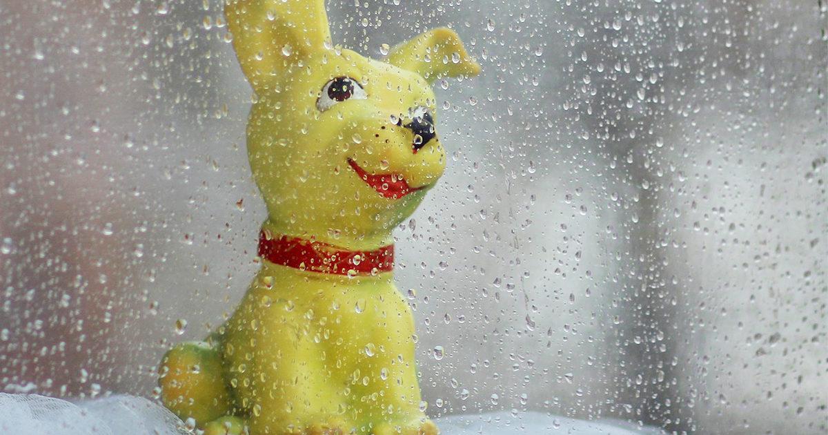 梅雨時の健康トラブルに、救世主あらわる